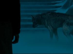 narnia wolf